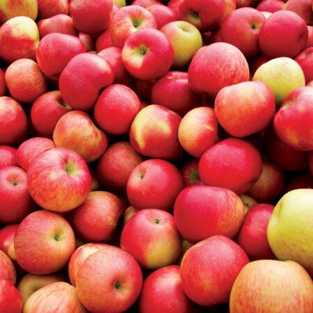 Гидролат – яблока