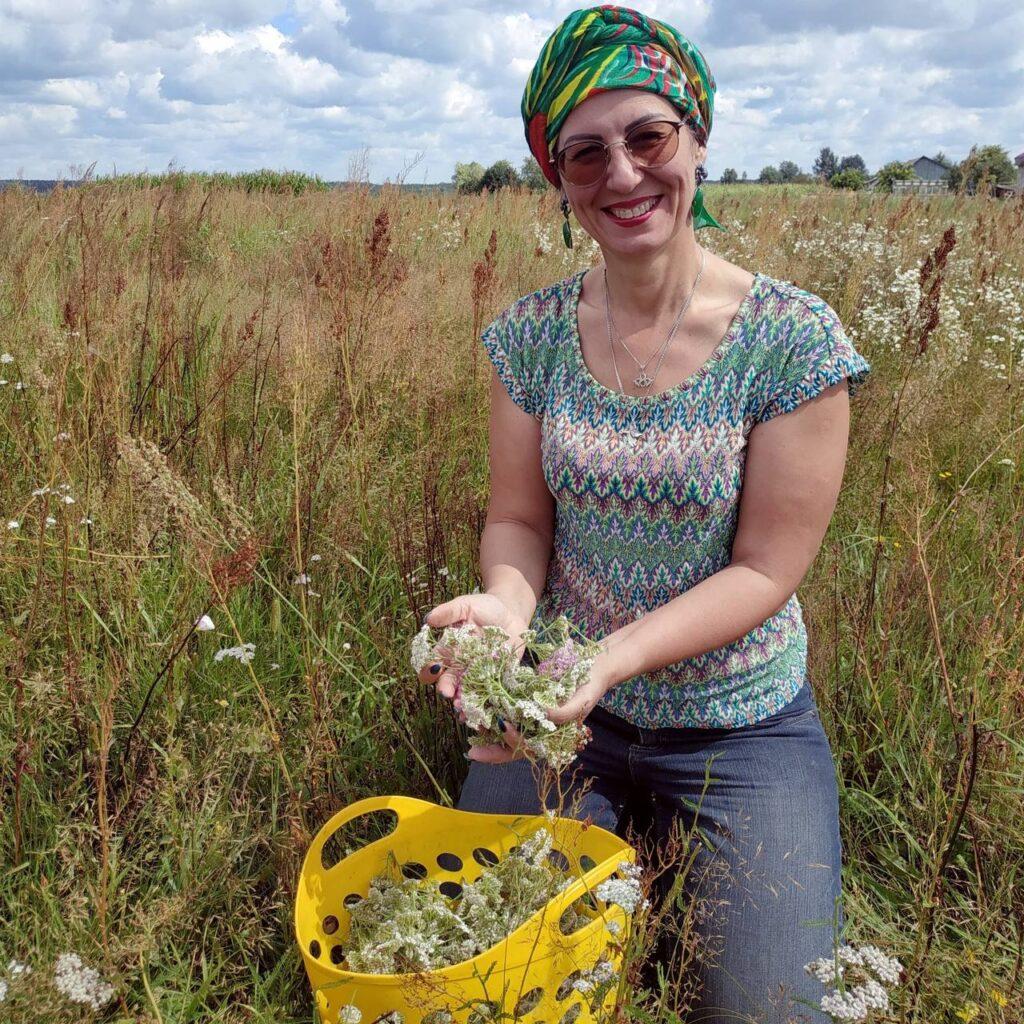 Как мы собираем травы на нашы гидролаты