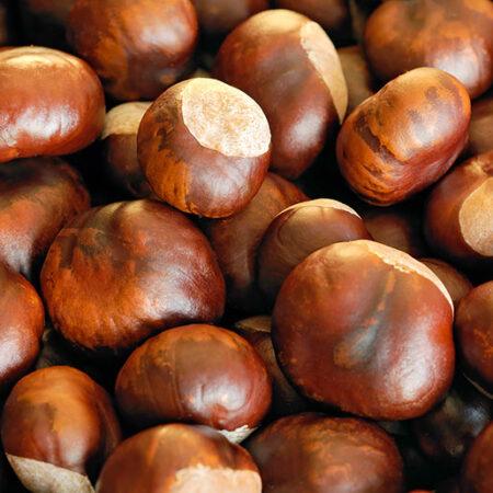 Экстракт конского каштана и виноградных листьев в капсулах